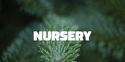 nurseryhome