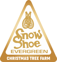 U-Cut and U-Choose Christmas Tree Farm | Snowshoe Evergreen